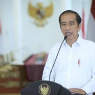 Presiden Jokowi.(foto:ist)